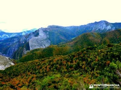 Hayedos Parque Natural de Redes;viaje fin de año bosque irati pasear por madrid
